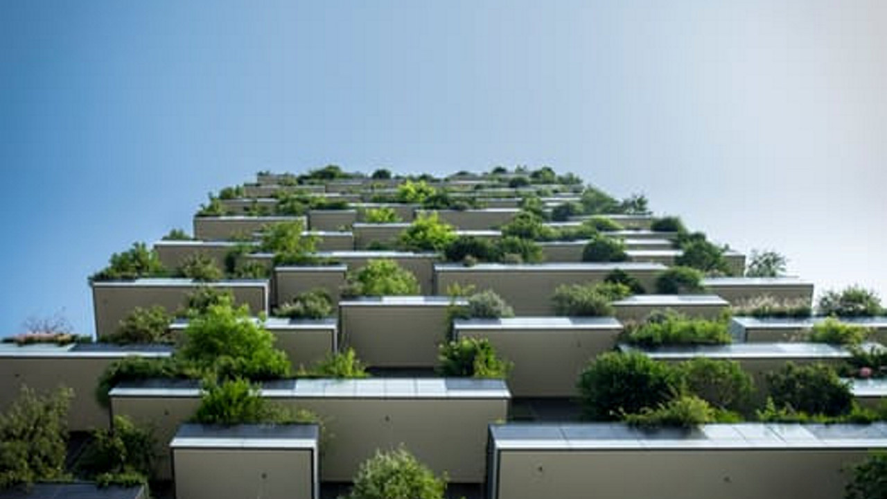 Mange balkonger med fine, grønne planter