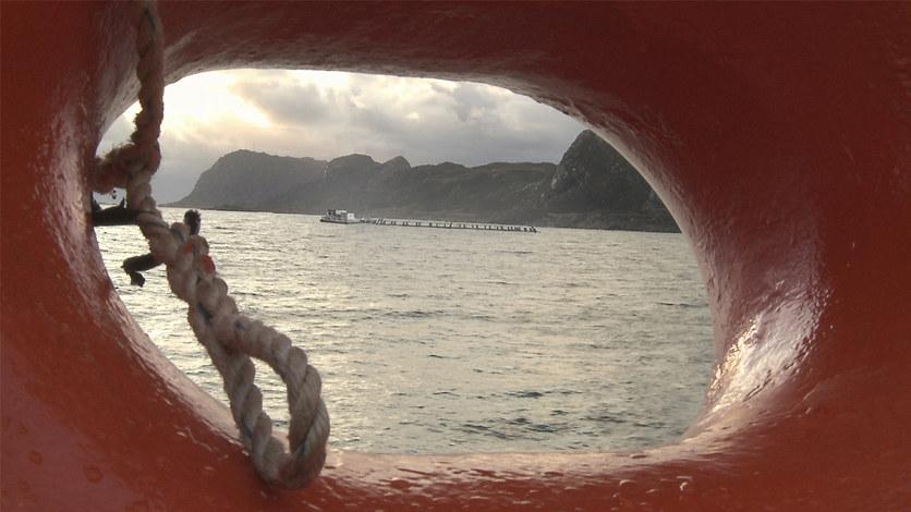 - Norge kan ta den internasjonale lederposisjonen når det gjelder å skape nye verdier i havet, eller vi kan overlate den til andre. Ocean Space Centre er ett virkemiddel for at vi skal kunne ta den posisjonen, sier Agnes Landstad i Abelia.