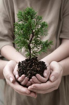 Vi hører ofte spørsmålet «Men, er det ikke mye dyrere å anskaffe miljøvennlig, da?» Svaret er ikke et entydig ja – i alle fall ikke gjennom vår erfaring med det offentlige som miljøbevisst oppdragsgiver og tilrettelegger for dialog med relevante markedsaktører. Faktisk kan vi dokumentere både betydelige offentlige midler spart og klima- og miljøgevinster gjennom innovative anskaffelsesprosesser i mange av prosessene hvor Leverandørutviklingsprogrammet har bistått i markedsdialogen.