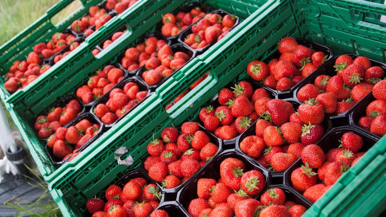 Jordbær i kurver