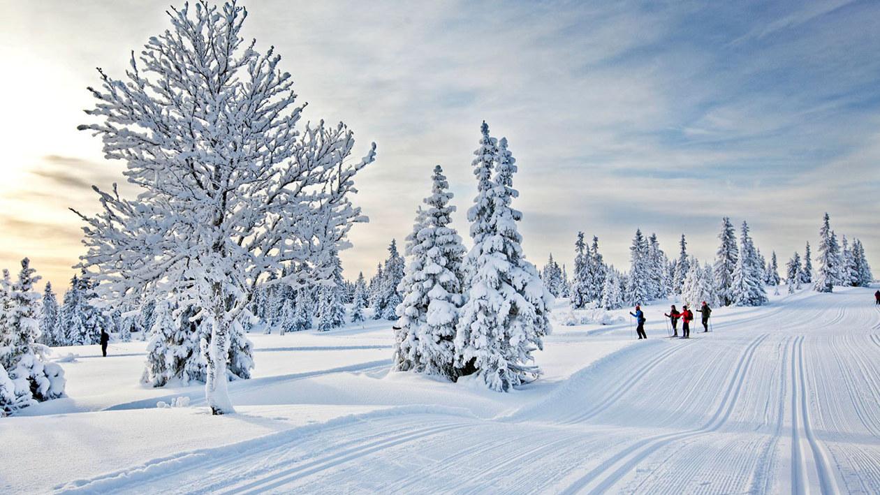 Lillehammer cta