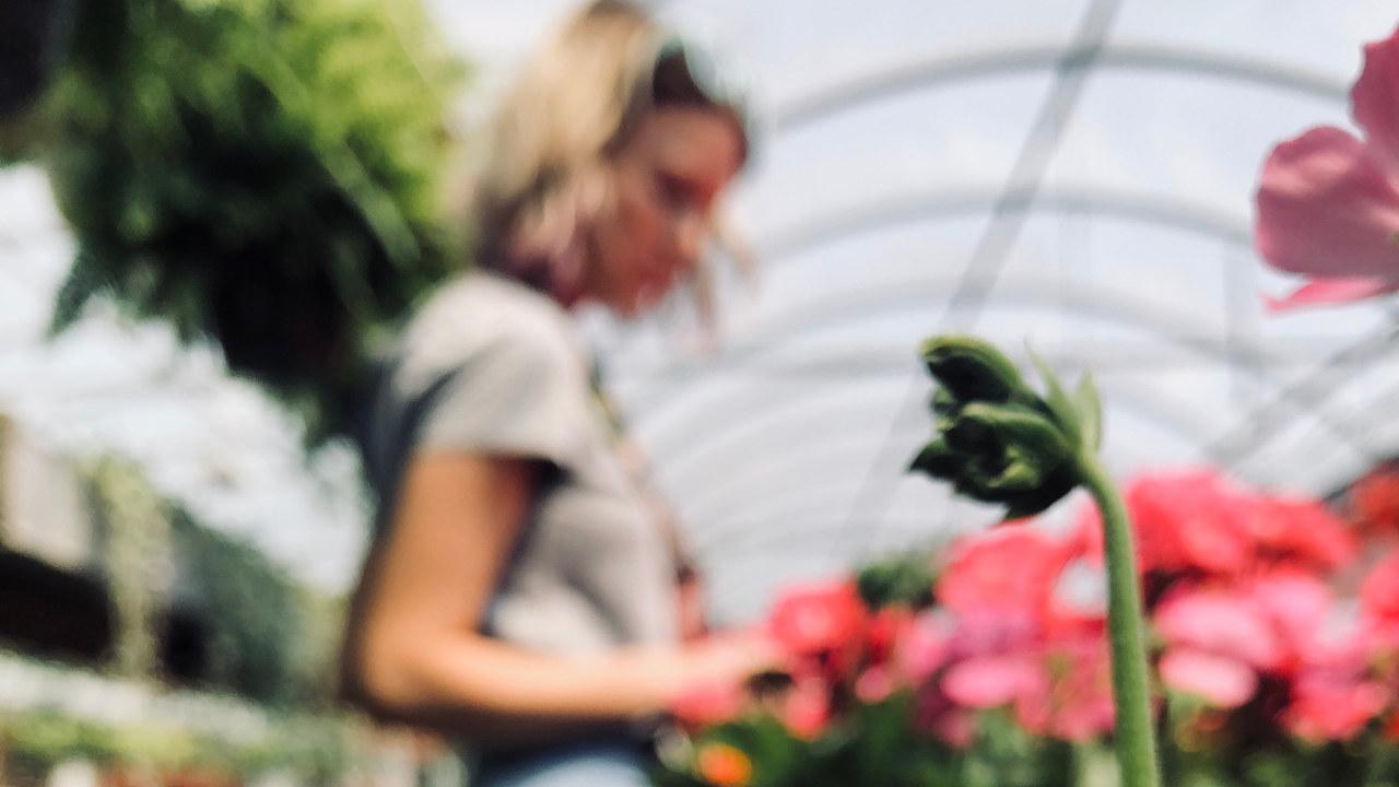 Kvinne som steller med blomster