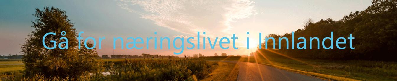 Gå for næringslivet i Innlandet 2019, banner med tekst