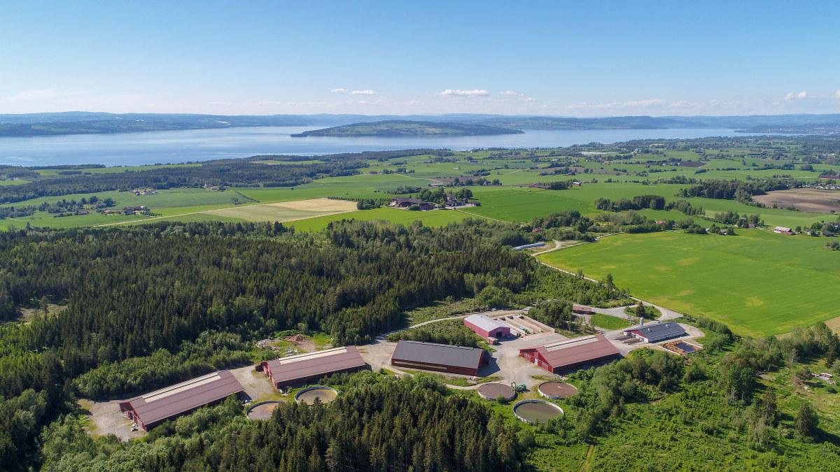 Luftfoto av avlsstasjonen