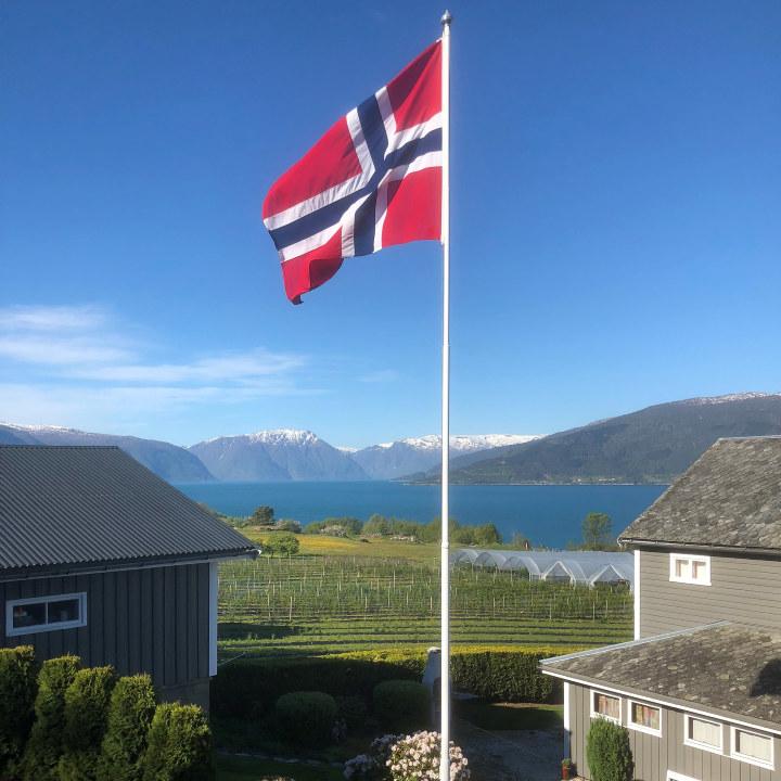 Et oversiktsbilde over gården der Ola Hopperstad driver bærproduksjon.